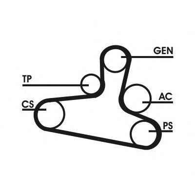 Поликлиновой ременный комплект CONTITECH арт. 6DPK1195D1