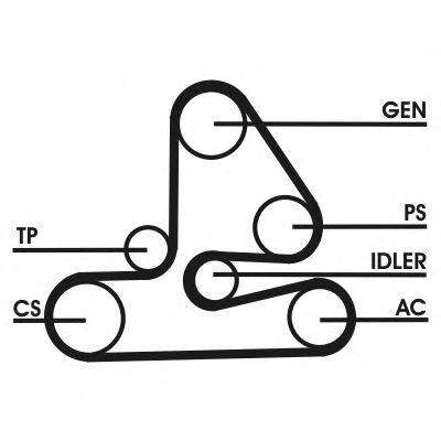 Поликлиновой ременный комплект CONTITECH арт. 6PK1613D1