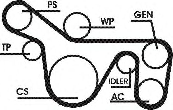 Поликлиновой ременный комплект CONTITECH арт. 6PK1720D1